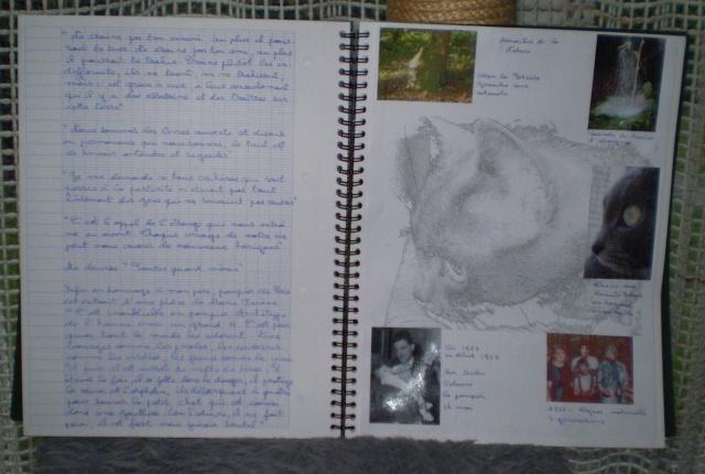 http://i72.servimg.com/u/f72/09/02/08/06/cahier10.jpg