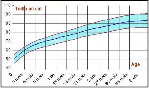 La taille moyenne d'un nouveau né se situe aux alentours de 50 cm