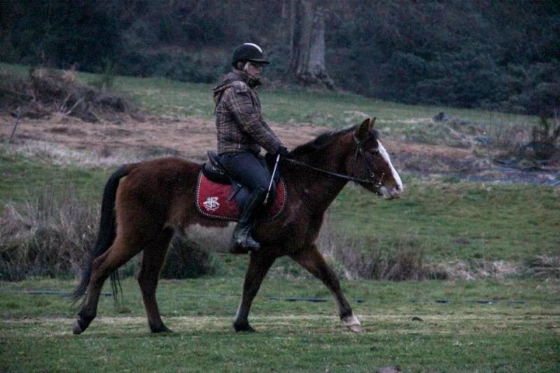 poney 1m15