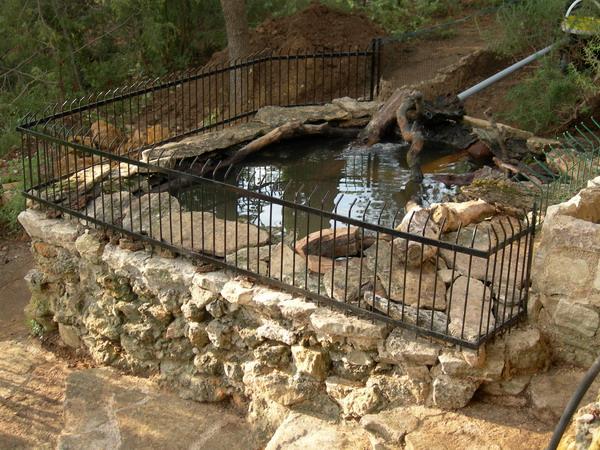 Notre bassin pour tortues - Petit bassin plastique villeurbanne ...