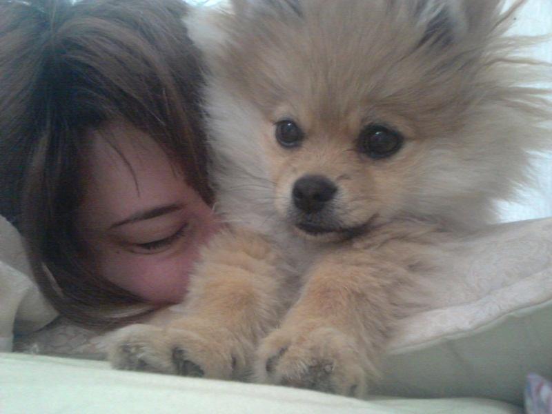 est ce si terrible si mon chien dort dans ma chambre?