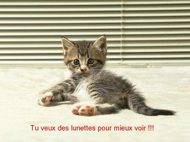cat_0110
