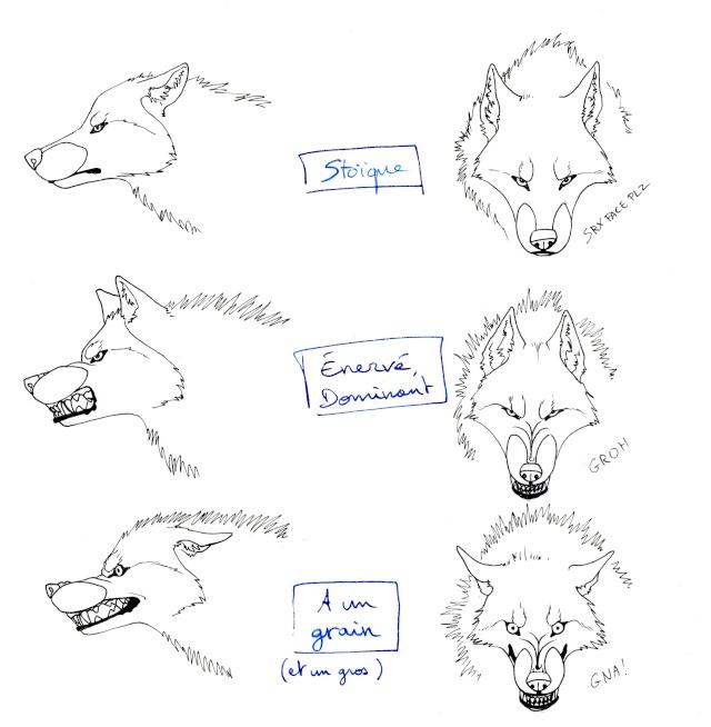 Tuto comment dessiner un loup 2 page 4 - Dessiner une tete de loup ...