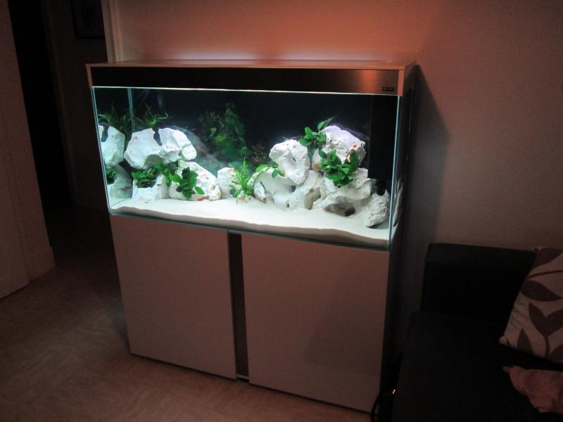 vend aquarium 240l emotion nature