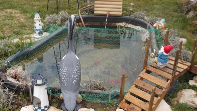 mon bassin de 3000 l et mon bassin pr form de 1000 l. Black Bedroom Furniture Sets. Home Design Ideas