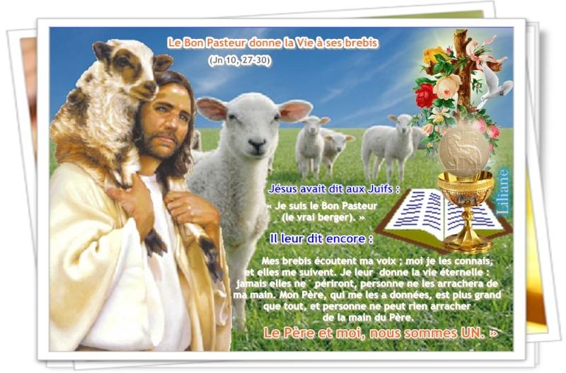 Mardi : Le bon pasteur donne la vie éternelle à ses brebis