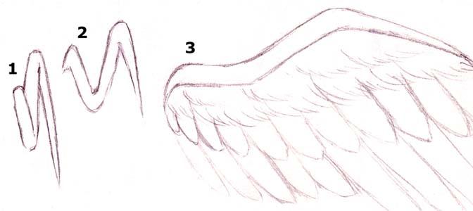 Aide dessiner des ailes - Ailes d ange dessin ...