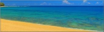 La Mer Tropicale