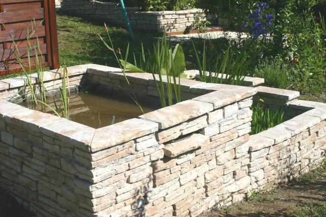 Nelumbo nucifera et horticoles lotus sacr for Construire une fontaine de jardin