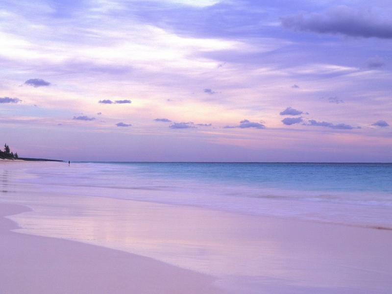 Him His Pink Sand Beaches Excellent Diving And Luxury Resorts Practically Can Not Leave Anyone Indifferent